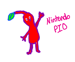Nintendo PIO