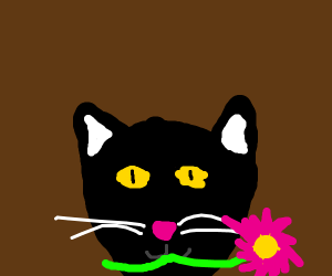 Cat holding flower