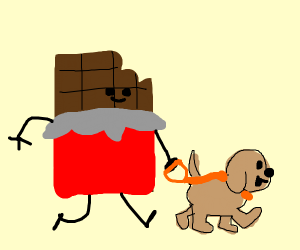 Chocolate (good stuff) walking a dog