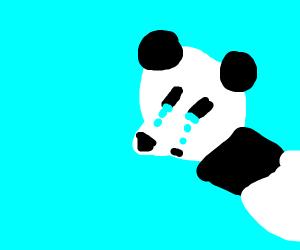 A crying panda
