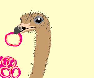 Ostrich Eating Onion Rings