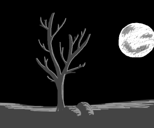 Dead tree ent in an open field