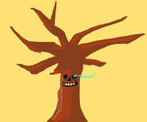 Sans tree