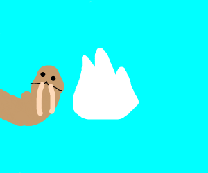 abstract walrus