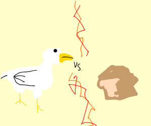 Duck vs Bread