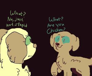 Dog thinks dog is chicken