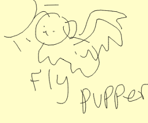 winged dog flying into the sun