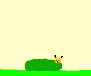Pikachu in a bush