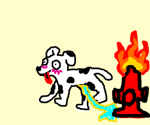 fire fighter dog pees water on fire hydrant