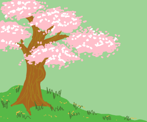 pink tree with a bulge
