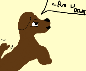 "a dog says ""can u dont"""