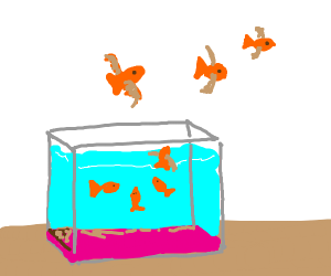 Goldfish can fly