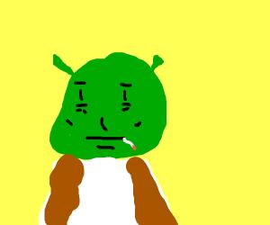 Shrek Smoking