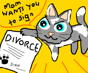 kitten holds divorce papers