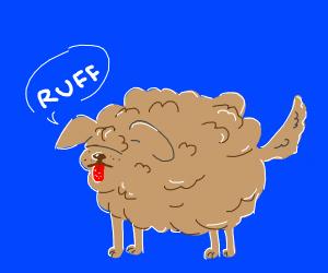 floooofy dog