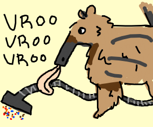 Anteater Vacuuming
