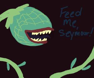 Feed me Seymour