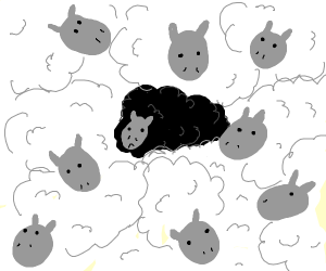 a black sheep in a crowd of white sheep