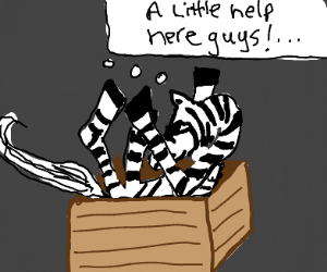 Zebra contortionist is in trouble.