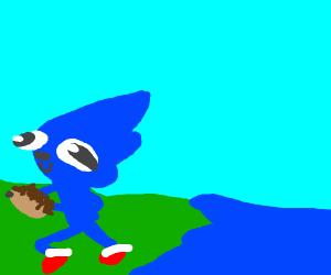 Sonic saves headgehog from lake