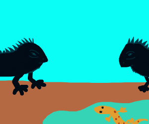 Salamander and Iguanas