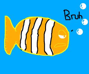 Nemo says -bruh-