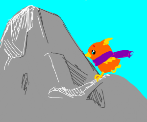 Torchic on a Mountain