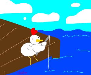 Chicken is fishing
