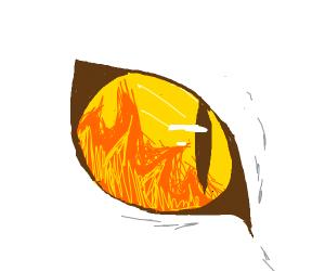 Firey cat eye