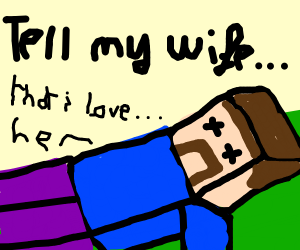 Minecraft Steve is dead now.