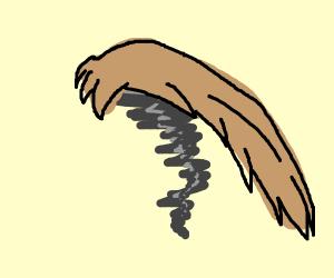 tornado with hair