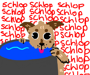 Dog likes water