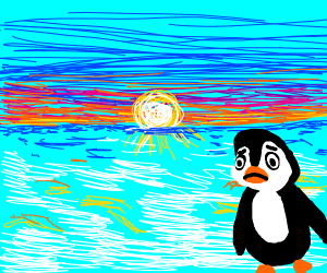 a depressed penguin looking at a sunset