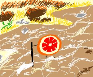 Grapefruit crossing a River