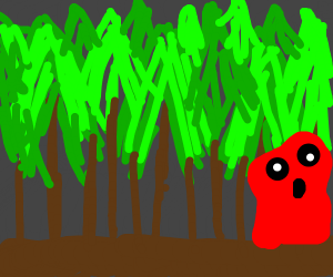 red thing in forest