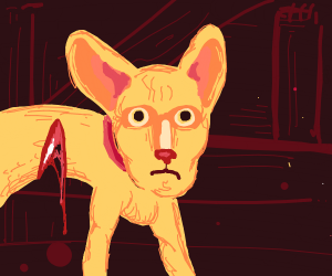 Skinny meat cat