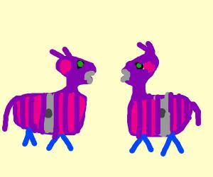 Llamas facing eachother