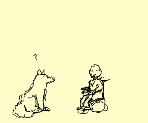 Dog puzzled by man in a wheelchair