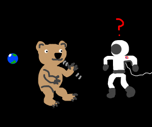 Bear in Space