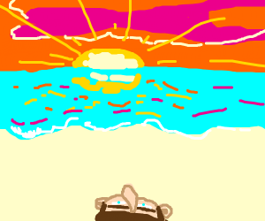 Watching the sun set on a beach