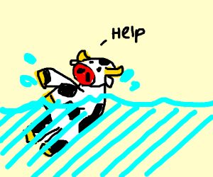 Cow drowning