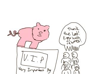 Pig on display