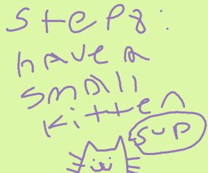 Step 7: posses your hot kitten