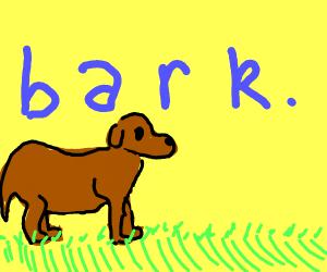 b a r k