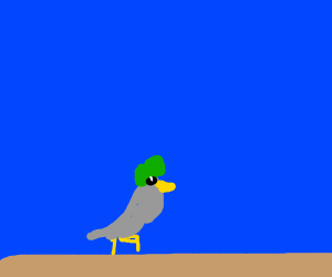 Pigeon wearing a green wig calls you losers