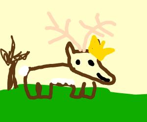 Deer King