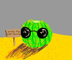 a cool cactus
