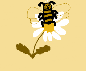 Bee angry at flower
