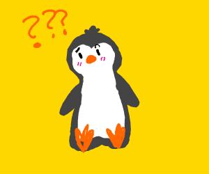 Confused Penguin