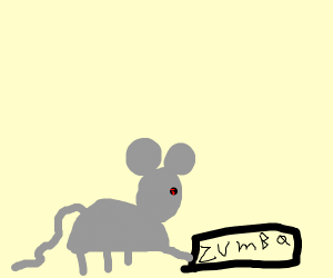 fitness-addicted rat likes Zumba